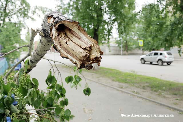 МЧС поРостовской области объявило штормовое предупреждение