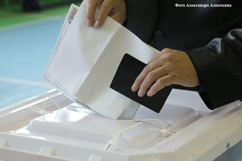 курган выборы