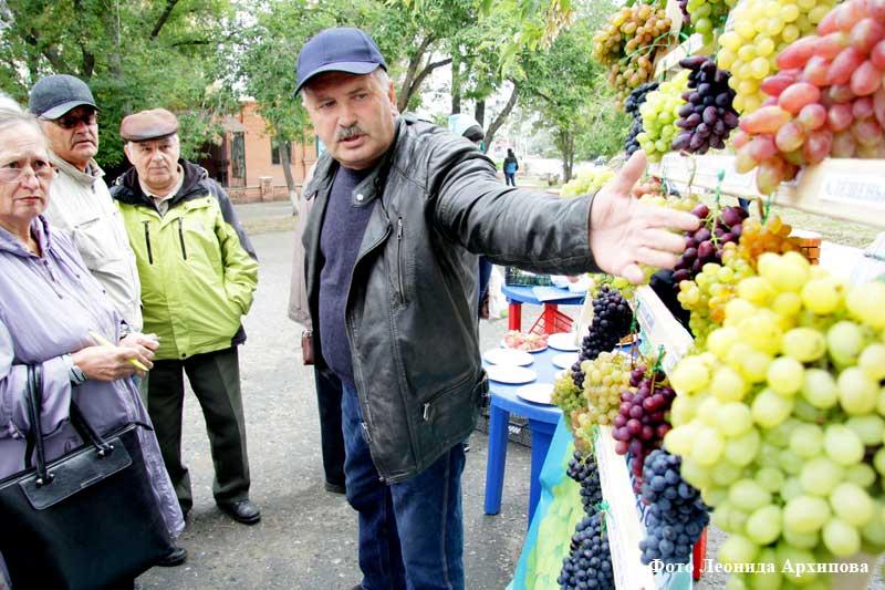 курган новости виноград