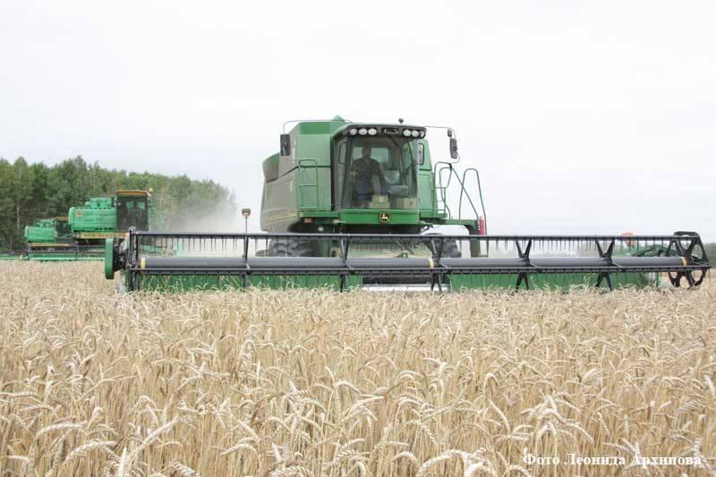 курган курганская область сельское хозяйство уборка урожая