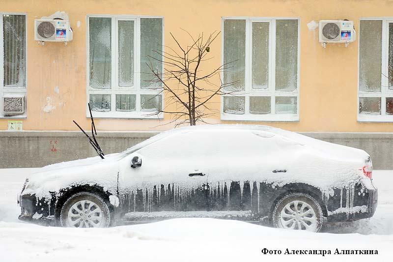 В Кургане в отдельных районах города высота выпавшего за несколько часов снега составила от 10 до 20 см.