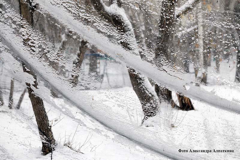 Весенний снегопад в городе.