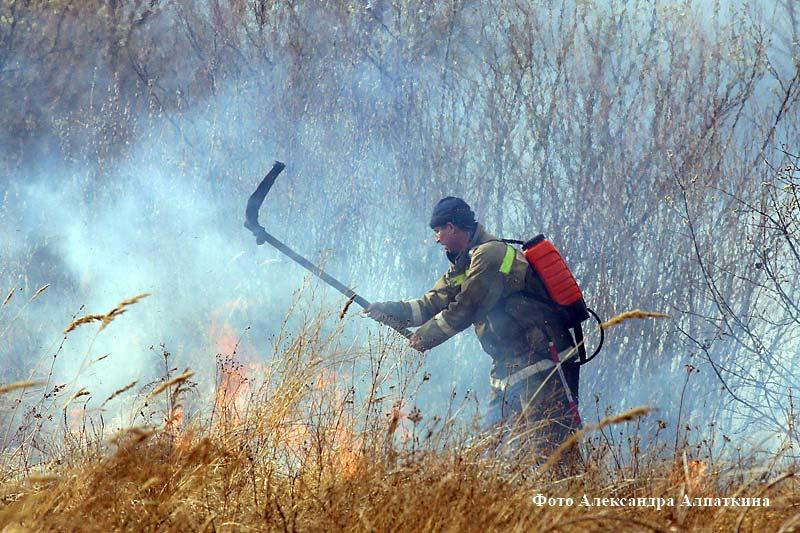 Вокруг Кургана и в самом городе зафиксировано 50 возгораний сухой травы.