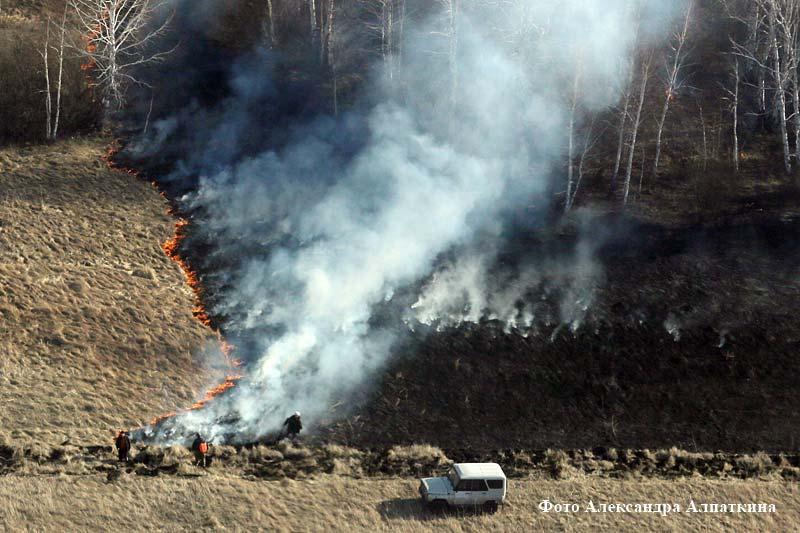 Полевые пожары в Курганской области.
