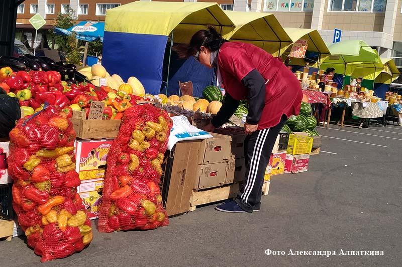 Сельскохозяйственная ярмарка «Дары осени-2018»