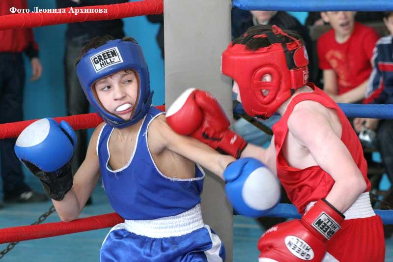Новости Кургана бокс