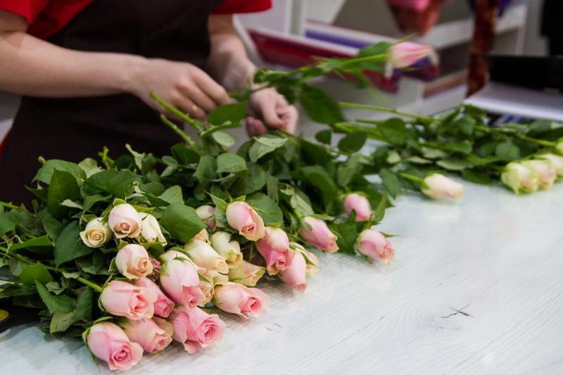 новости круган оргабление цветы