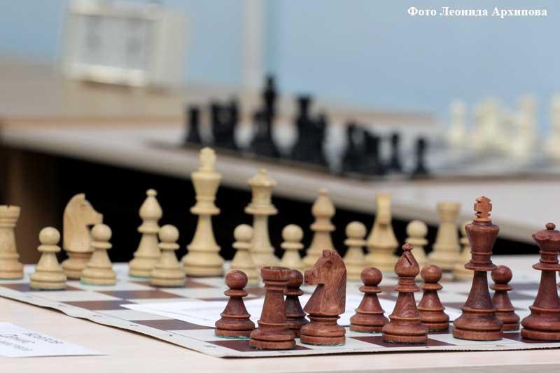 шахматы новости курган