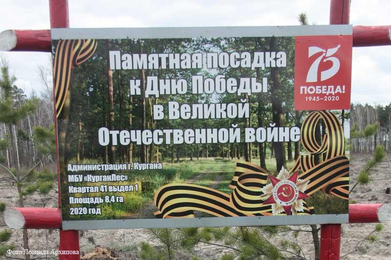 Возле Кургана появится новый лес