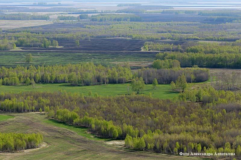 Весна на полях Курганской области