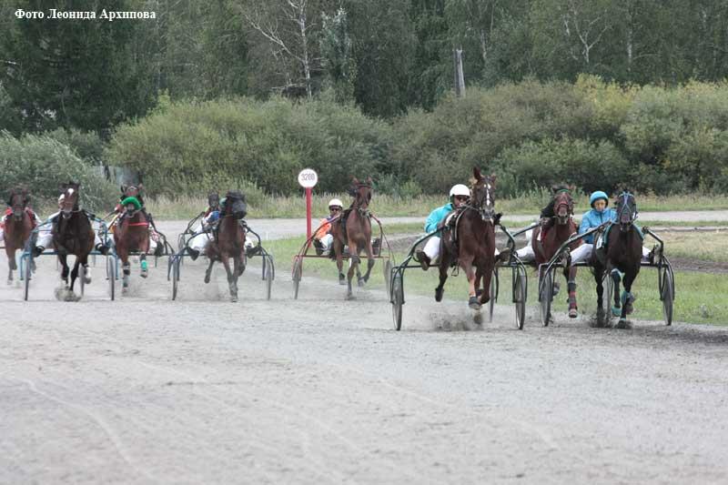 Конно-спортивные соревнования на кубок губернатора Курганской области и кубок главы города Кургана.