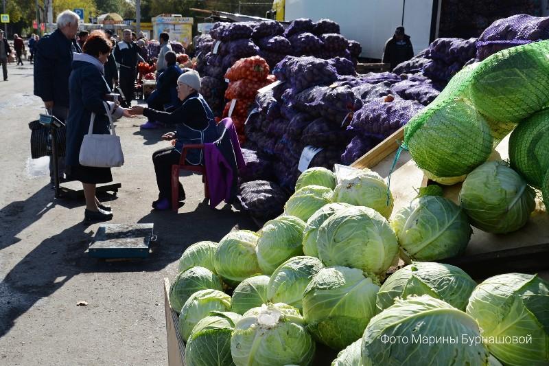 В Кургане работают сельскохозяйственные ярмарки