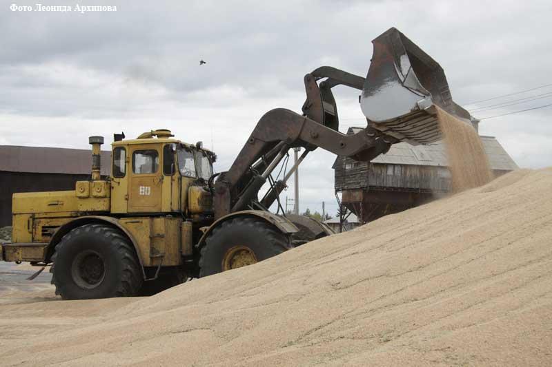 В воскресенье, 11 октября, Зауралье вместе со всей Россией отметило День работника сельского хозяйства и перерабатывающей промышленности.