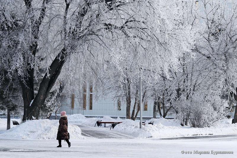 Февральская сказка в городе после морозной ночи.