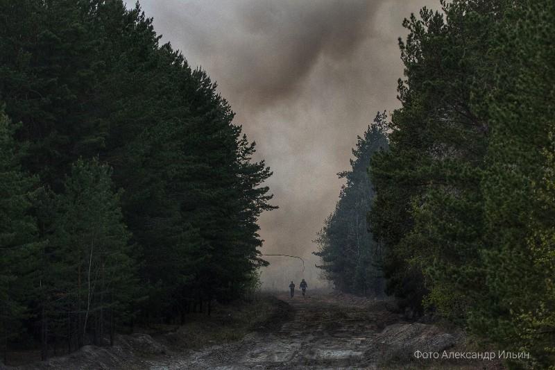 Вокруг Курганской области бушуют лесные пожары
