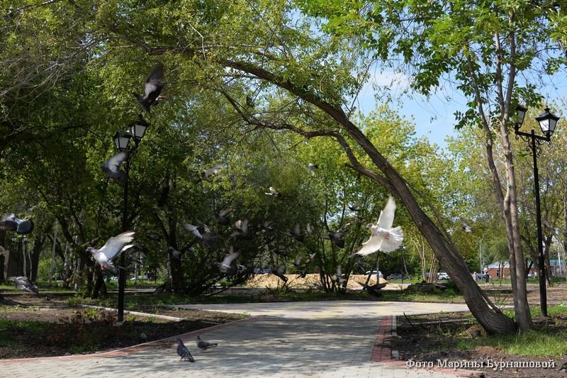 Благоустройство городского сада